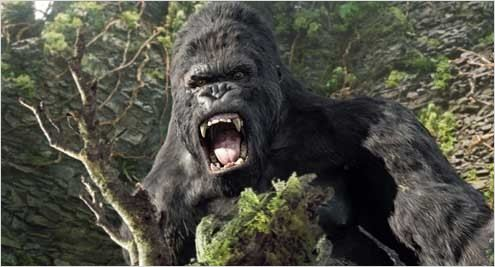 King Kong 2005 Real : Peter Jackson COLLECTION CHRISTOPHEL